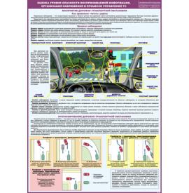 """Плакат """"Оценка уровня опасности воспринимаемой информации, организация наблюдения в процессе управления ТС"""""""