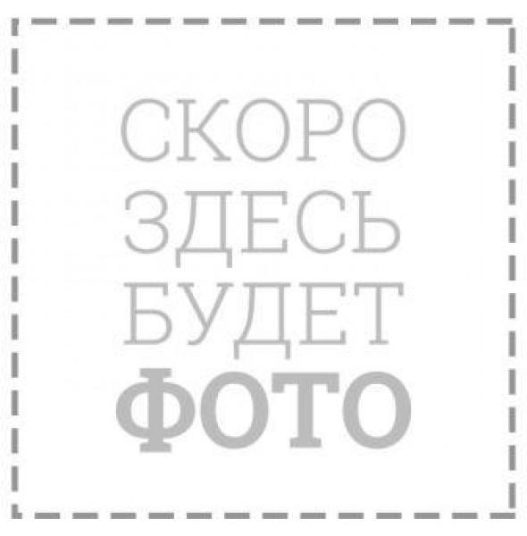 Журнал вводного инструктажа