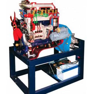 Двигатель дизельный МТЗ с навесным оборудованием (агрегаты в разрезе) (без коробки)
