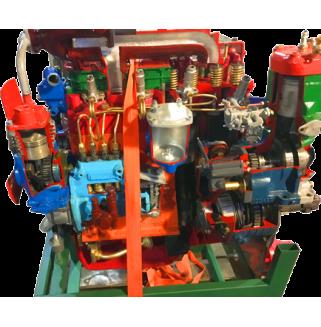 Двигатель дизельный МТЗ с коробкой, сцеплением и навесным оборудованием (агрегаты в разрезе)