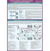 """Плакат """"Общее устройство тормозной системы с пневматическим приводом"""""""